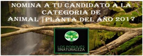 PlantaAño2017